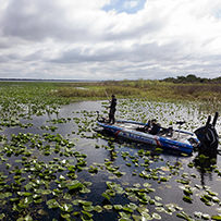 2019 Lake Kissimmee Major League Fishing Pro Tour Stage 1 Photo Gallery - Jacob Wheeler Fishing - Pro Bass Fishing Angler